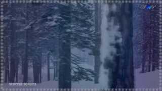 Winter Sonata Relaxing Music