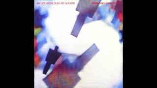 Watch Brian Eno Mea Culpa video