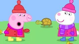Season 5 - NO!!!  Peppa Pig Full Episodes | Naughty Tortoise | Cartoons for Children