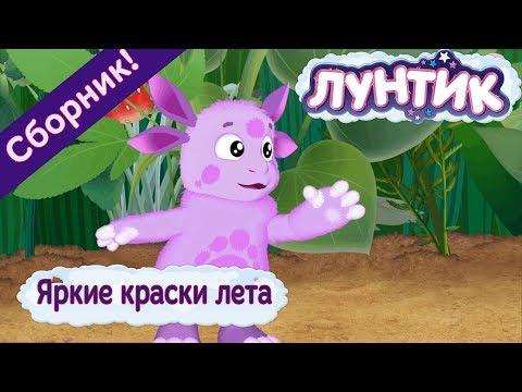 Лунтик 🌈 Яркие краски лета ☀️Сборник мультфильмов