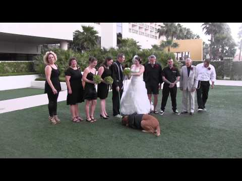 じっとするのやだも~ん♪結婚式の写真撮影の邪魔をする犬