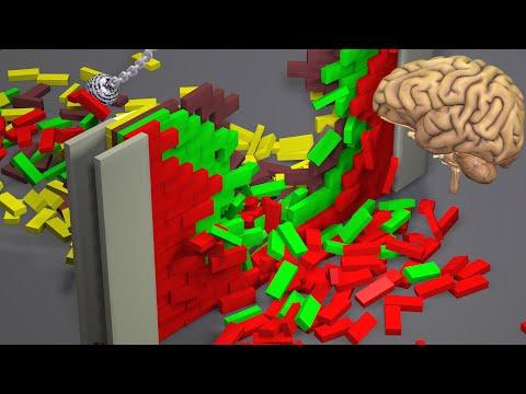 Physics Simulations and Simulating the Human Brain
