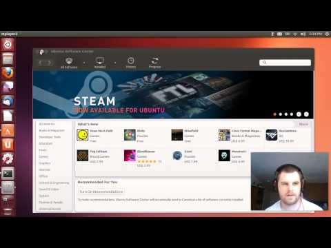 Ubuntu 13.04 review.