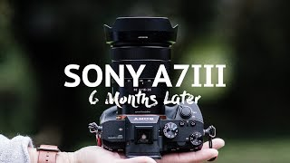 Sony A7iii - 6 months later - The good and the bad