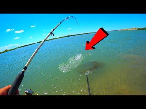 САЗАН И ВОБЛА ПЁРЛИ БЕЗ ОСТАНОВКИ!!! И НЕ ДАЛИ СПАТЬ НИ НОЧЬЮ НИ ДНЕМ. Рыбалка как активный отдых.