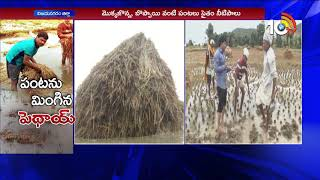 Cyclone Phethai causes crop loss in Vizianagaram | Phethai Strom Updates