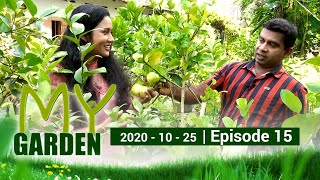 My Garden | Episode 15 | 25 - 10 - 2020