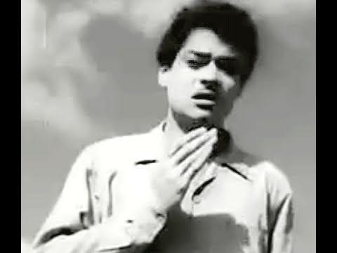 Chal Ud Jare Panchhi - Mohammed Rafi, Jagdeep, Bhabhi Song 2 video