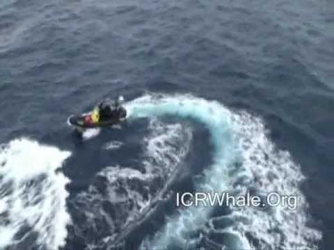 February 11, 2012 Yushin Maru # 2 Attacks Sea Shepherd With Water Cannons
