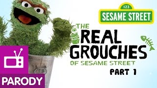 Meet The Real Grouches of Sesame Street | Real Housewives Parody | Part 1 of 3