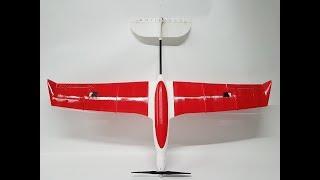 3D Printed evolution speed Glider from 3dberridi.com - Maiden Flight