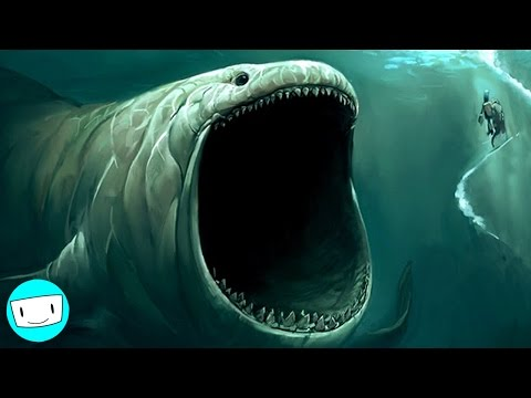 8 biggest sea monsters ever