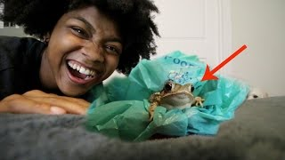 EXTREME SCARE PRANK W/ FROG ON GIRLFRIEND