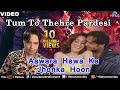 Aawara Hawa Ka Jhonka Hoon (Altaf Raja)