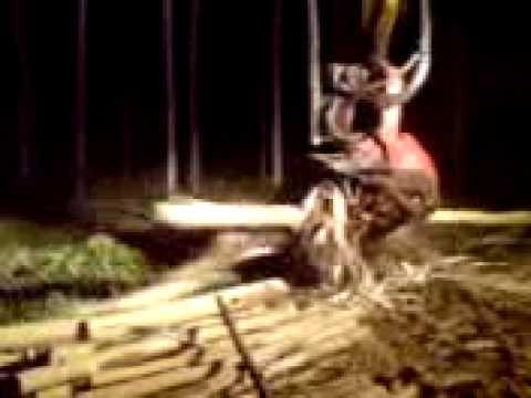 Maquina de cortar eucalipto