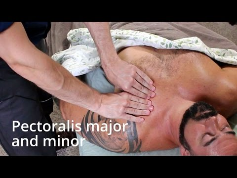 How to massage pectoralis major and minor (the pecs)