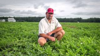 Charles Wright is going farming
