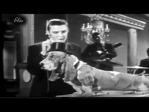 ELVIS PRESLEY -  HOUNDDOG -  HUMOROUS VERSION
