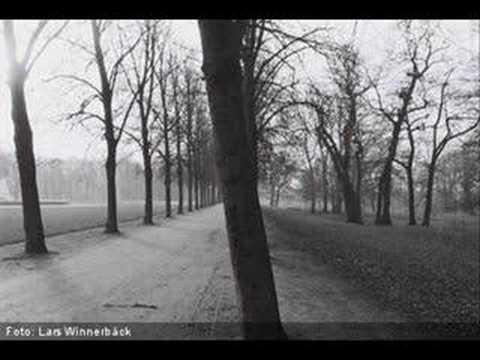 Lars Winnerback - Jag Har Vantat Pa Ett Regn