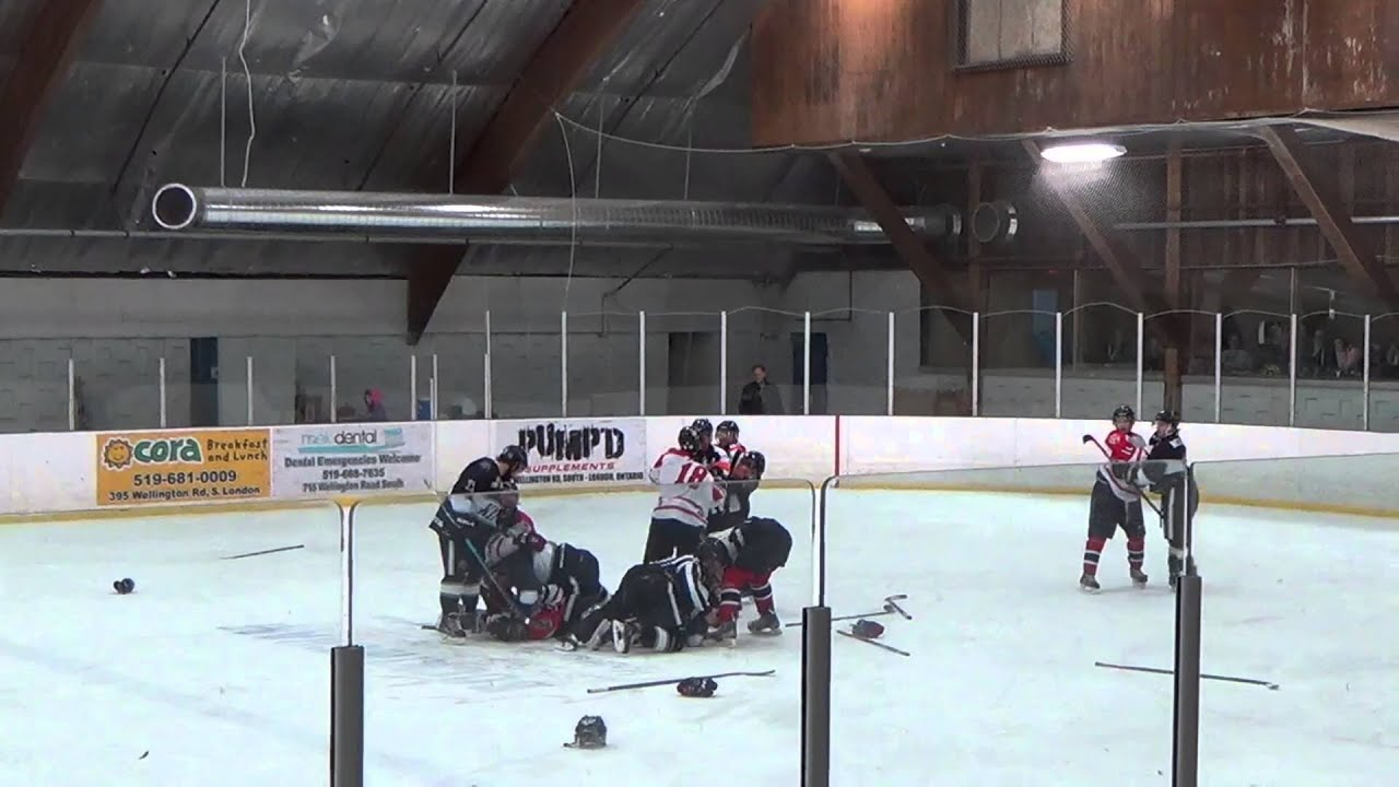 [Hockey Brawl: Trainer vs Ref vs Player] Video