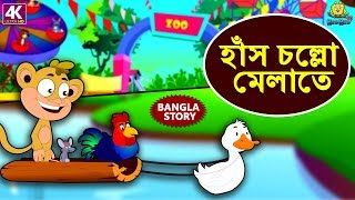 হাঁস চল্লো মেলাতে - Rupkothar Golpo | Bangla Cartoon | Bengali Fairy Tales | Koo Koo TV Bengali