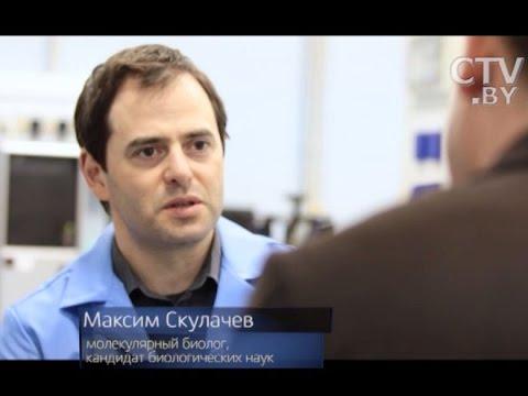 Наше тело совершает биохимическое самоубийство: биолог Максим Скулачёв