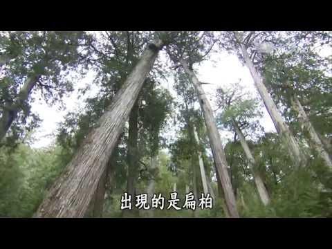 大愛-發現-20150425 霧林秘境 - 鴛鴦湖