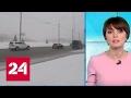 """""""Погода 24"""": на Петербург обрушилось аномальное количество снега"""