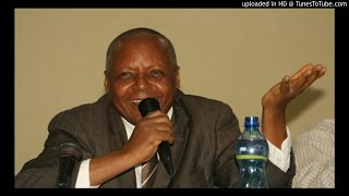 Interview with Dr Merera Gudina - SBS Amharic