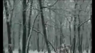 Thomas Hardy -The Darkling Thrush