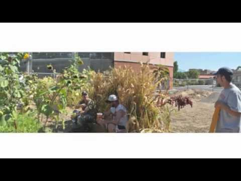 Pre Fab Farm - Waste Water Garden