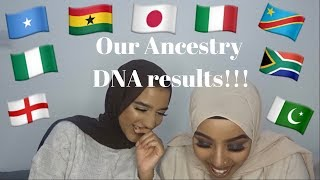 OUR ANCESTRY DNA RESULTS!!!