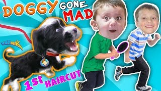 OUR PUPPY BITES & CHASES US AROUND HOUSE!  OREO, Princess or Beast? (FUNnel Vision Doggy Vloggy)