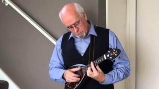 Blues/ Gospel fingerstyle ukulele solo