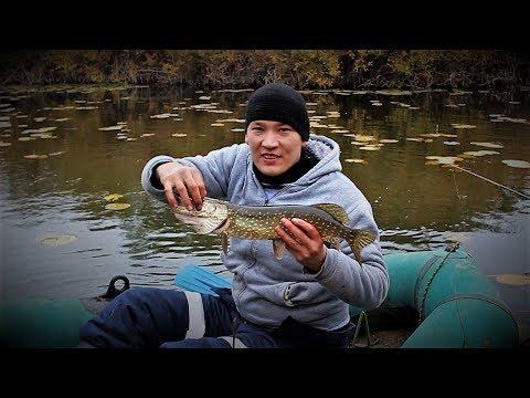 видео рыбалка в малых прудах
