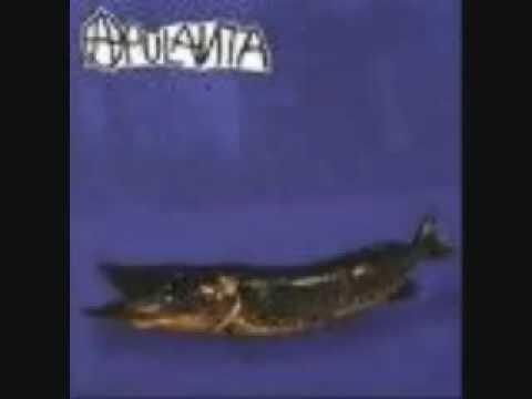 Apulanta - Kalamiehen Toveri