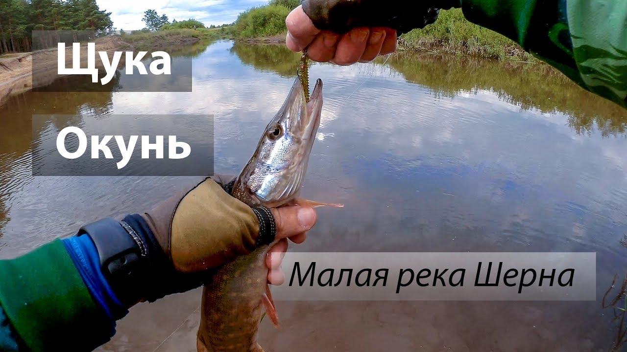 Ловля рыбы на реке шерна