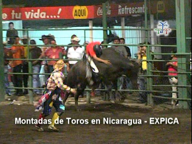 EXPICA-corrida de toros-01.mpg