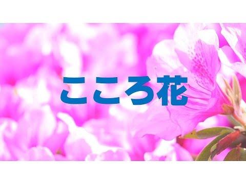 こころ花(歌)(japanese Enka Song, Flowers In My Heart)/渡  健 video