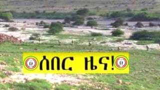 Arebegnoch Ginbot 7 Daily Ethiopian News February 16, 2017