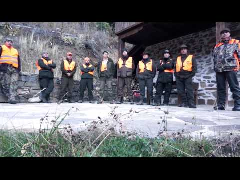 Wild Boar Driven Hunting In Bulgaria - video chasse au sanglier