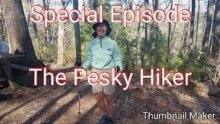 Special Episode. The Pesky Hiker