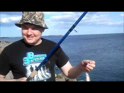 рыбалка на дамбе финского залива видео