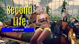 What to do in Second Life - See a show
