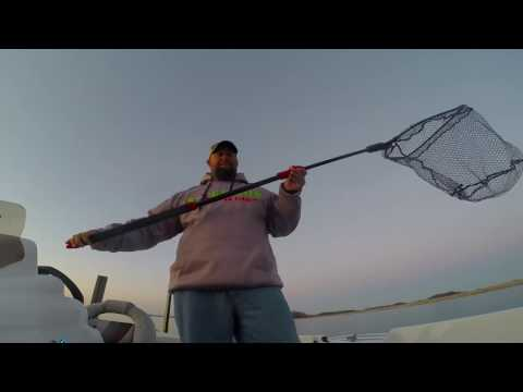 Ego S2 Slider Net Review and Features