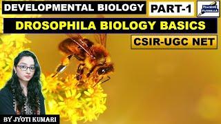DEVELOPMENTAL BIOLOGY OF DROSOPHILA (PART-1) || CSIR NET LIFESCIENCE || IMPORTANT