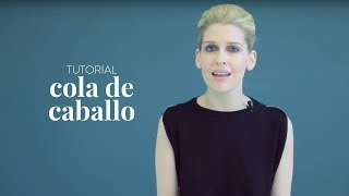 Cola de caballo | The Beauty Effect