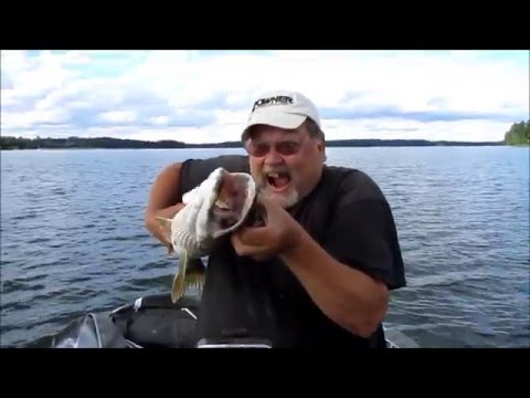 Fishing report - SUDAK - LEVREK - TURNA  10.08.2011.wmv Video