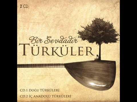 Bir Sevdadır Türküler - Bir Ay Doğar İlk Akşamdan Geceden (2014)