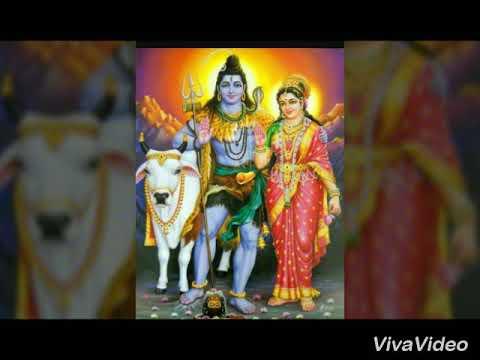 Rathi bommalona koluvaina shivuda video song /ever see this video song amazing